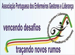 a prática da gestão dos enfermeiros portugueses.